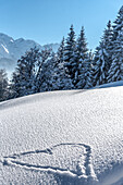 Germany, Bavaria, Alps, Oberallgäu, Oberstdorf, Winter Landscape, Winter Holidays, Heart in snow, Winter Hiking Trail, Coniferous Forest