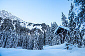Germany, Bavaria, Alps, Oberallgaeu, Oberstdorf, Oytal, Winter Landscape, Winter Holidays, Winter Hiking Trail, Jesus Cross in the Snow, Coniferous Forest