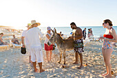 tourists with donkey on the beach of Cayo Coco, sandy dream beach, turquoise blue sea, boat, snorkeling, swimming, Memories Flamenco Beach Resort, hotel, family travel to Cuba, parental leave, holiday, time-out, adventure, Cayo Coco, Jardines del Rey, Pro