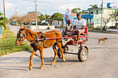 empty road through the cuban countryside from Vinales to Puerto Esperanza, horse-drawn carriage, horse cart, family travel to Cuba, parental leave, holiday, time-out, adventure, horse-drawn carriage,  San Cayetano, day trip from Vinales, Pinar del Rio, Cu