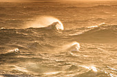 Rough seas lit by late-afternoon sun, Foveaux Strait, between South Island and Stewart Island, New Zealand