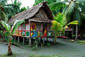 The sides of a house roofed with palm fronds is covered with colorful paintings of animals, Kopar, East Sepik, Papua New Guinea, South Pacific