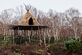 A raised teepee typical of the Itelmen culture, Itelmen Homestead, Kamchatka, Russia, Asia