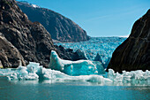 Icebergs fill the waters in the Tracy Arm, near the Sawyer Glacier, Tracy Arm, Stephens Passage, Tongass National Forest, Tracy Arm-Fords Terror Wilderness, Alasksa, USA, North America