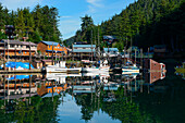 Fisherboats and the town of Elfin Cove are mirrored by calm waters in the harbor, Elfin Cove, Chichagof Island, Alaska, USA, North America