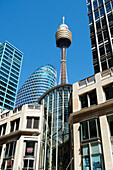 The city of Sydney with the Sydney Tower, Sydney, New South Wales, Australia