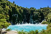 Blau leuchtender Kratersee, Inferno Lake, Waimangu Vulcanic Valley, Rotorua, Bay of Plenty, Nordinsel, Neuseeland