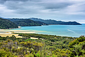 Meeresbuchten mit Sandstrand am Abel Tasman Coastal Track, Abel Tasman Coastal Track, Great Walks, Abel Tasman Nationalpark, Tasman, Südinsel, Neuseeland