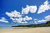 Beach at Tasman Sea, Hump Ridge, Hump Ridge Track, Fiordlands National Park, UNESCO world heritage Te Wahipounamu, Southland, South island, New Zealand
