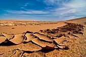 Dried ground with cracked desert soil, Erg Chegaga, Sahara, Morocco