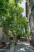 Rue des Teinturiers, Restaurants, street cafe, Avignon, Provence