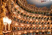 La Fenice opera theater, Ceiling, Venedig, Venezia, Venice, Italia, Europe