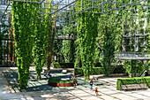 MFO Park, public park of former Maschinenfabrik Oerlikon (MFO) , climbing plants, steel frame,  Zurich, Switzerland