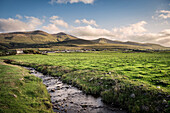 hilly landscape around Castlegregory Beach, Dingle Peninsula, Slea Head Drive, County Kerry, Ireland, Wild Atlantic Way, Europe