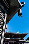 The Buddhist Temple at Chi Lin Nunnery in Kowloon, Hong Kong, China, Asia
