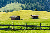 Typical wooden huts on an alpine meadow on the Alpe di Siusi, Compatsch, South Tyrol, Alto Adige, Italy