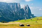Typical wooden huts on a meadow of the Alpe di Siusi with a view at the mountain range Schlern, Compatsch, South Tyrol, Alto Adige, Italy