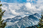 Mountain slopes framed by fir trees in the Zillertaler Alps, Königsleiten, Zillertal, Tirol, Austria