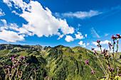 Die Tuxer Alpen im Sommer bei Sonnenschein, Zell am Ziller, Zillertal, Tirol, Österreich