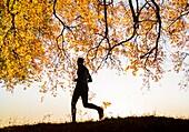 Mature jogger at sunrise on an Autumnal morning. Billingham, North east England. United Kingdom.