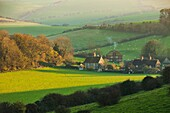 Misty autumn afternoon in South Downs National Park, West Sussex, England.