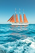 Antique, vintage sailing ship with red sails on the Pacific Ocean, with a bright blue sky