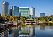 Japan, Tokyo City, Hama Rykiu Garden, Shimbashi Skyline.