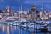 New Zealand, North Island, Wellington, skyline from the harbor, dawn.