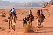 Tourists riding camels at sunset in the Wadi Rum desert, Jordan.