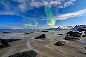 Northern Lights illuminate the landscape around Gymsøyand and the snowy peaks. Lofoten Islands Northern Norway Europe.