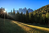 Green meadows and colorful woods in autumn frame the Odle. Malga Zannes. Funes Valley South Tyrol Dolomites Italy Europe.
