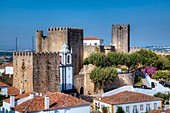 Medieval Castle, Obidos, UNESCO World Heritage Site, Portugal