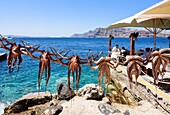 Octopuses hanging on a line outside a seafront taverna in Ammoudi, Santorini, Cyclades, Greece.