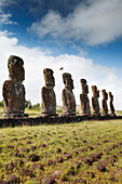 EASTER ISLAND, CHILE, Isla de Pascua, Rapa Nui, the Ahu Akivi is a sacred place in Rapa Nui that looks out toward the Pacific Ocean, the site has seven Moai which are all of equal size and shape