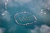 Ocean Acidification Demonstration By Boats And Kayaks In Kachemak Bay, Homer, Southcentral Alaska, USA