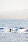 Surfer Walking On Beach, Kachemak Bay With Kenai Mountains In The Background, Homer Spit, Southcentral Alaska, USA