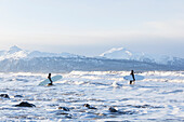 Surfers Entering Kachemak Bay Along Homer Spit, Southcentral Alaska, USA
