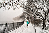 Blizzard Conditions By The Jacqueline Kennedy Onassis Reservoir, Central Park; New York City, New York, United States Of America