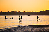 Five Women Stand Up Paddle Boarding On The Ocean Near Tofino, On Mackenzie Beach At Sunset, Vancouver Island; Tofino, British Columbia, Canada