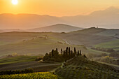 The morning sun rising above layered Tuscany green hills and the small Podere Belvedere villa with a vineyard in the foreground near San Quirico D'orcia; Tuscany, Italy