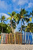 A rack of colourful surfboards lined up on Waikiki Beach; Honolulu, Oahu, Hawaii, United States of America