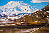 Classic view of Denali looming over a bus traveling along the road in Denali National Park near Stony Pass in early summer; Alaska, United States of America