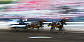 Motion blur of cowboys riding in a carriage behind a team of horses in front of spectators in the stands at the Calgary Stampede; Calgary, Alberta, Canada