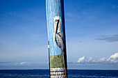 Close-up view of a pelican painted on a telephone pole with ocean and blue sky beyond; Pine Island, Florida, United States of America