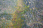 Aerial View Of Twitter Creek Running Through A Forest On Kenai Peninsula; Alaska, United States Of America