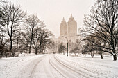Blizzard Conditions In Central Park; New York City, New York, United States Of America