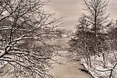 Blizzard Conditions By The Lake In Central Park; New York City, New York, United States Of America