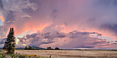 Dramatic Pink Glow In Storm Clouds Over A Field At Sunset; Thunder Bay, Ontario, Canada