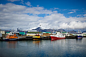 Colourful Boats In The Harbour And Buildings Along The Waterfront; Hofn, Iceland