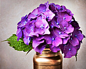 Purple Hydrangea Flowers And Leaf In A Copper Jar On A Gray Background